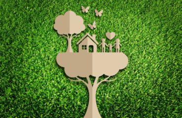 papier ekologiczny do druku